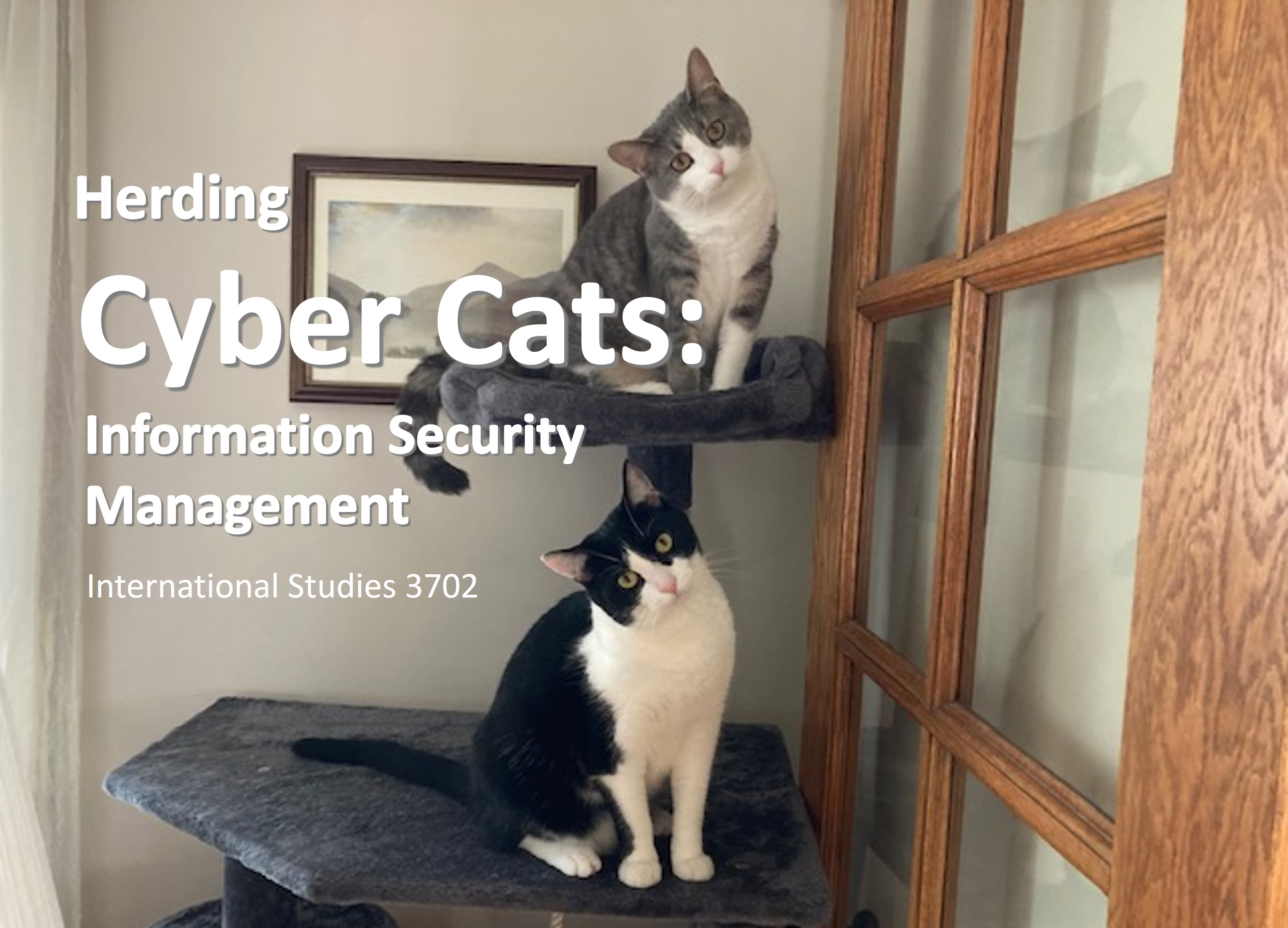 Herding Cyber Cats Course Flyer Icon
